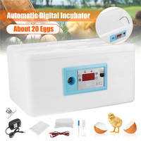 Family Eggs Incubator 20 Position Automatic Digital Chicken Poultry Hatcher Foam Home Waterbed Incubator Farm Incubation Tools