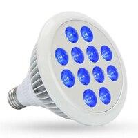 수경법 채식 성장 모든 파란색 LED PAR38 성장 빛 E27 LED 식물 성장 수족관 및 식물 성장 (450-460nm)