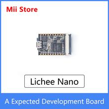 Sipeed lichee Nano Linux płytka rozwojowa z lampą błyskową 16M wersja IOT 2021 nowość