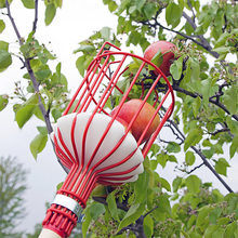 Picador de frutas de metal coleção picking cabeça ferramenta jardinagem maçãs peras pêssegos laranjas frutas apanhador jardim ferramentas
