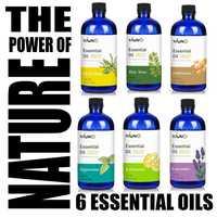 KIUNO 150ML Essential Oils 100% Pure Natural Aromatherapy Essential Fragrance Humidifier Lavender Tea Tree Peppermint Lemon Rose