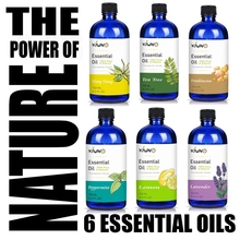 KIUNO 150ML Essential Oils 100% Pure Natural Aromatherapy