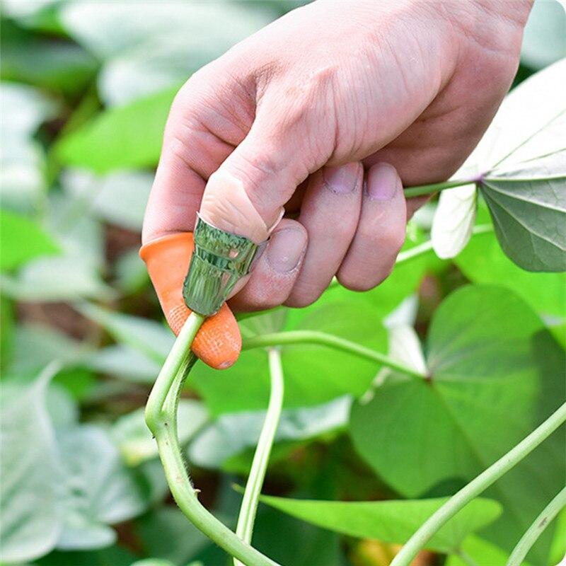 Силиконовый нож для большого пальца, защита для пальцев, нож для сбора овощей, лезвие для растений, ножницы, Режущие кольца, садовые перчатки|Защита для пальцев|   | АлиЭкспресс