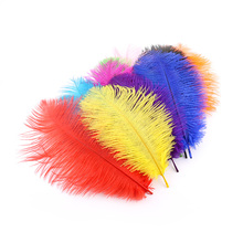 Best Selling Crafts 10 Pieces Of Natural Dyed Ostrich Hair 20-25CM Wedding Dress Art DIY Ornaments Holiday Scene Decoration