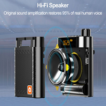 Voice Amplifier Wireless Microphone Headset For Meeting Classroom Microphone Set Home Audio Video Equipment Drop Shipping