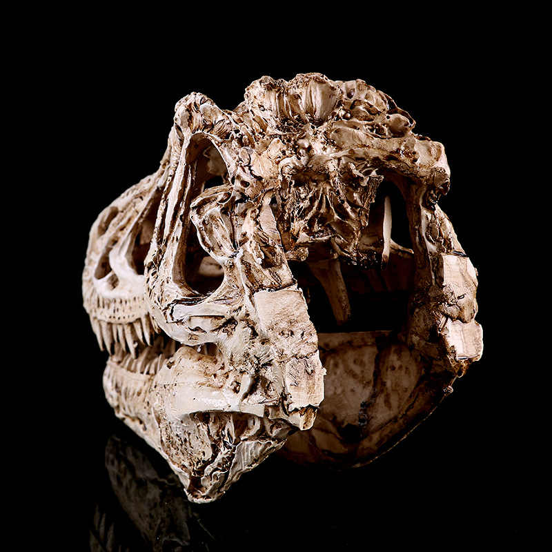 Cráneo de dinosaurio de resina de un solo cresta líder en investigación Animal enseñanza creativa decoración del hogar Decoración fresca