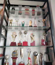 Customized Metal/resin Trophy Medals Factory Directly Sales Academy Award Free shipment Christmas gift(China)