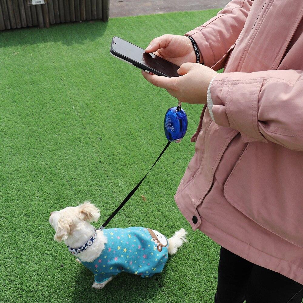 Makaralı köpek tasması