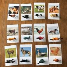 24 pçs montessori brinquedos animais jogo de correspondência cartões montessori pré-escolar língua educacional aprendizagem aves modelos brinquedo do miúdo