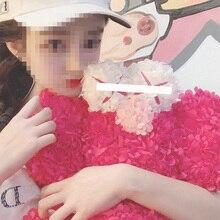 Fashion brand Sesame Street Companion Eternal Pink Petal Plush Baby Store Display Furnishings Gifts for Men  Women Friend