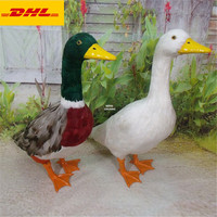 22 Animal Simulation Duck Wild Goose Home Decorations Garden Ornaments Holiday Gift Feather Action Figure Toy BOX 55CM X167