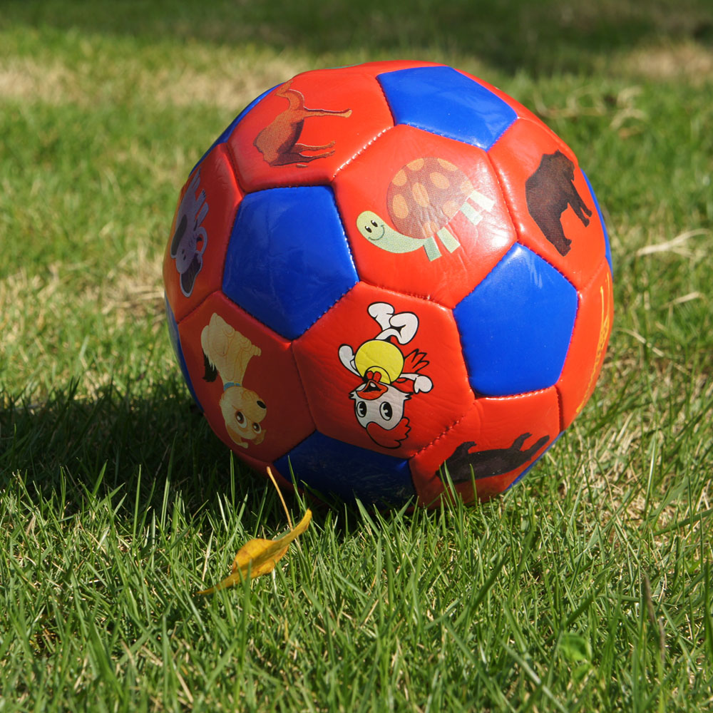 SIZE 2 MINI Soccer Ball Kids Football Sports Toys Cute Printing Ball For Children Kindergarten Intellectual Toy Soft Touch