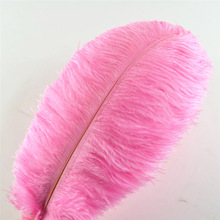 Wedding-Decorations Feathers-15-75cm Plumes Crafts Pink Party Natural Wholesale Carnival