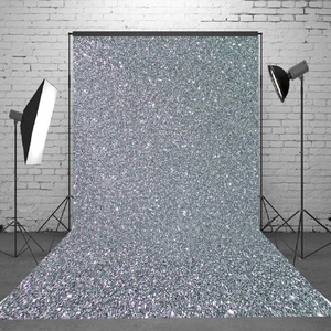 Best Price Freya 5x7FT Sparkling Silver Photography Background Pure Color Studio Prop Backdrop Photo Shot Photographic Back Drop For Studio
