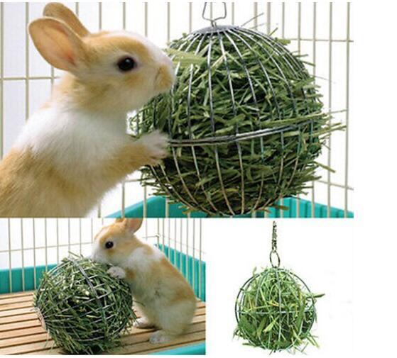 Animal de estimação brinquedos esfera alimentação dispensar exercício pendurado cobaia coelho jogo bola aço inoxidável venda quente