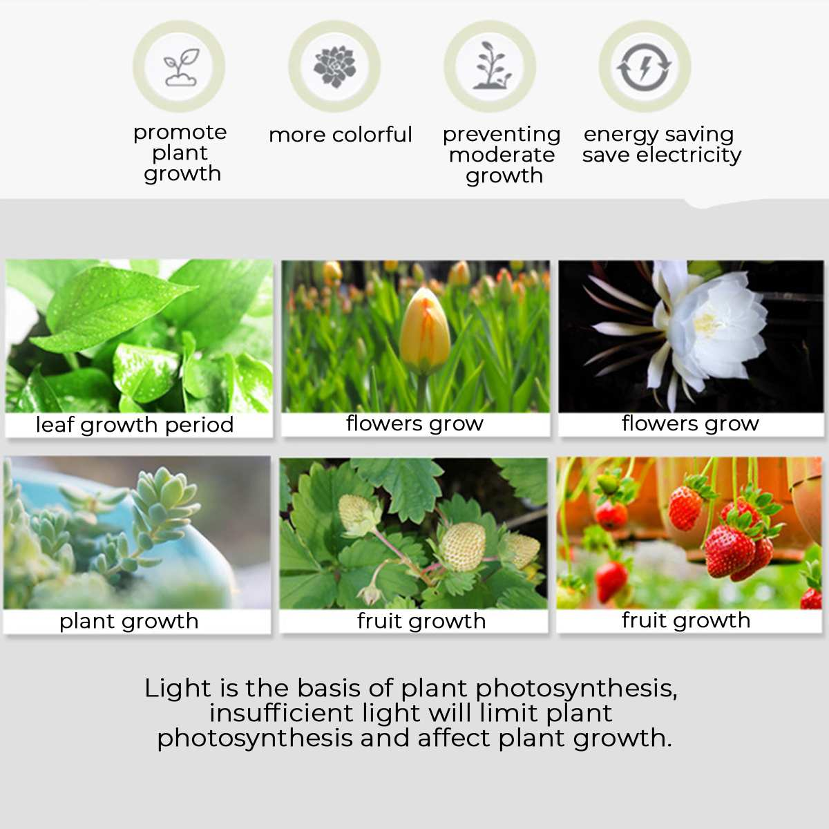 США/ЕС 20 Вт светодиодный, полный спектр, высокая эффективность, система освещения для выращивания растений, цветочный горшок, полка для растений с огнями для комнатных цветов