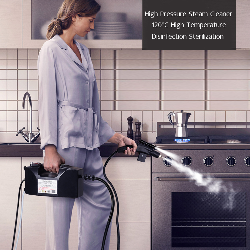 Steam Cleaner Kitchen Disinfection High Temperature Steam Cleaner for Air conditioner Hood Sterilization Anti- Coronavirus 110V 2