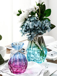 Przezroczysty kolor szklany wazon suszona kompozycja kwiatowa woda kultura szklana butelka salon do kreatywnej dekoracji doniczka