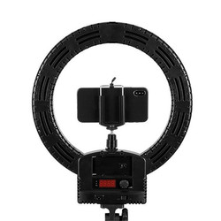 12 Inch Photo Studio Lighting LED Ring Light 240Pcs Bulbs Dimmable Photography Ring Lamp With 2m Light Stands For Video Makeup