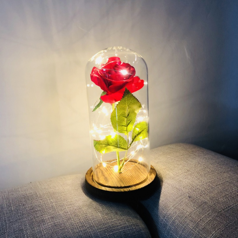 Rose Beauty Led Beast And Glass Light Red Dome Enchanted Gift Silk Wedding G