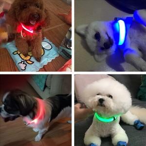 Image 5 - Usb recarregável cão de estimação led colar brilhante pet luminoso piscando colar ao ar livre andando cão noite suprimentos segurança
