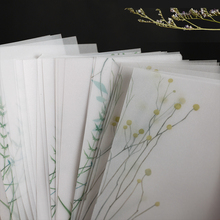 Ретро зеленые растения серии бумажные липкие нотки Цветочные полупрозрачные дневник-блокнот для заметок стационарные хлопья скрапбукинга декоративные винтажные