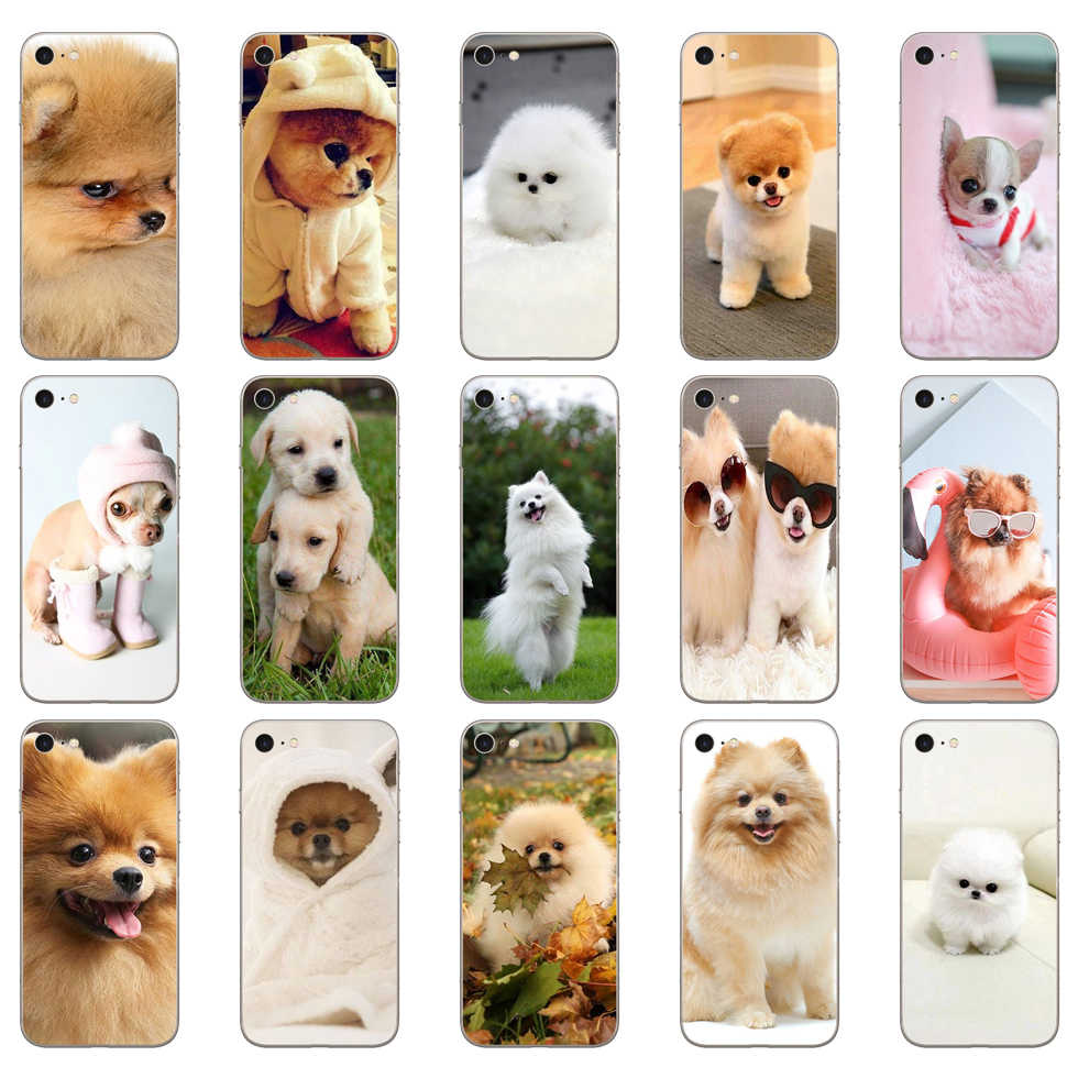 59DD Pommeren Hond Soft Silicone Cover Case Voor Iphone 5 5S Se 6 6S 8 Plus 7 7 plus X Xs Sr Max Case
