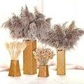 Pampas grama decoração de casamento decoração para casa flores secas ramo real natural plantas decoração diy flores de casamento decoração grama