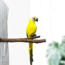 Perchoirs en bois pour animaux de compagnie, 15/20/25/30cm, perroquet, oiseau, perruche, perruche, perruche, morsure, grincement des griffes, accessoires de jouets pour oiseaux