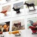 24 Teile/satz Montessori baby Lernen Englisch Tiere Kinder Karte Frühe Pädagogische praktischen leben Spielzeug Für Kinder L2666F