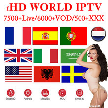 1 Year 8500+Live Europe IPTV French Dutch Spain Italy UK IPTV Subscription arabic iptv android free sports tv box ssmart tv pc(China)