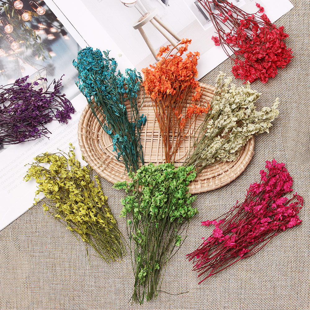 1 Bag Real Pressed Dried Flowers Floral Plants Colorful Crystal Grass Babysbreath For DIY Scrapbooking Card Making Art Craft Dec(China)