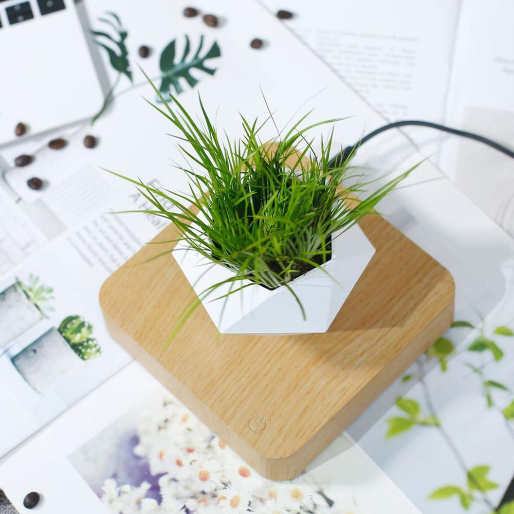 Rotating Flower Pot Magnetic Floating Potted Plant Home Desktop Decoration Wood Grain Plant Flower Pot (Without plants)  - buy with discount