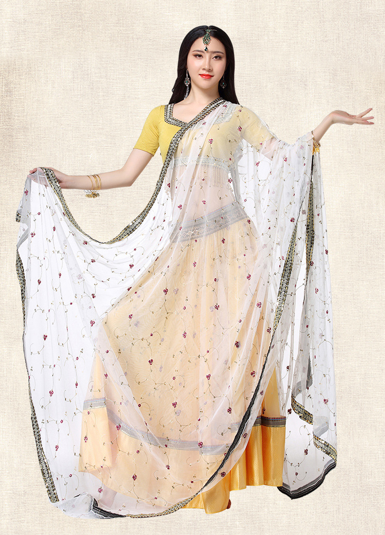 Embroidery Dance Costume Adult India <font><b>Sari</b></font> <font><b>Skirt</b></font> Woman saree asian vietnam <font><b>indian</b></font> dress malaysia image