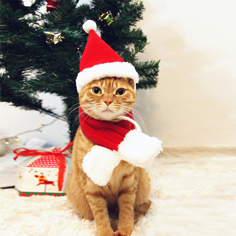 Pet Dog Cat Clothes Christmas Costume Cat Hat Scarf Cloak Dress Up For Kitten Puppy Small Dog Xmas New Year Costume Accessories 10