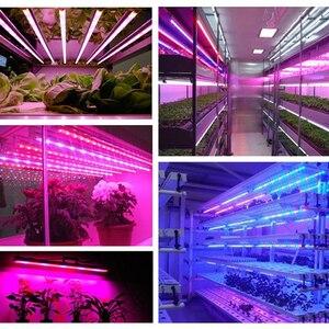 Image 5 - Necen 0.5M 10PCS 12V LED צמחים לגדול אור DC12V 5730 LED בר אור עבור אקווריום חממה צמח גדל 10 יח\חבילה