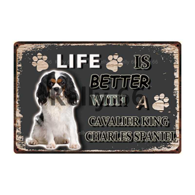 [Kelly66] psy Beagle chow chow bokserki border collie metalowy znak plakat na blasze domu pasek dekoracyjny ściany artystyczny obraz 20*30 CM rozmiar Dy103