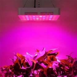300W 600W oświetlenie LED do uprawy Panel 100 LED 3W SMD3030 LED 7 zespół lampa do uprawy roślin dla kryty cieplarnianych hydroponika rośliny Lighitng