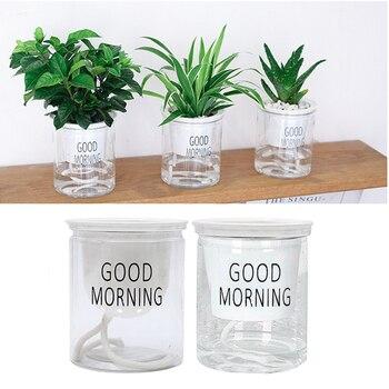 1 X Lazy Self-watering Flowerpot Automatic Water Absorption Succulent Aquaculture Transparent Round Plastic Hydroponic Flowerpot