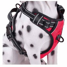 dog collar dog collar led dog collar electronic dog collar leather dog collars shock dog collars and harnesses led dog collar dog snatchers
