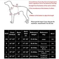 Шлейка для собак #4