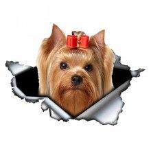 Autocollant 3D Auto-adhésif étanche A0104 #13 cm/17 cm, autocollant Yorkshire Terrier chien voiture, décors automobiles sur pare-chocs fenêtre arrière ordinateur portable