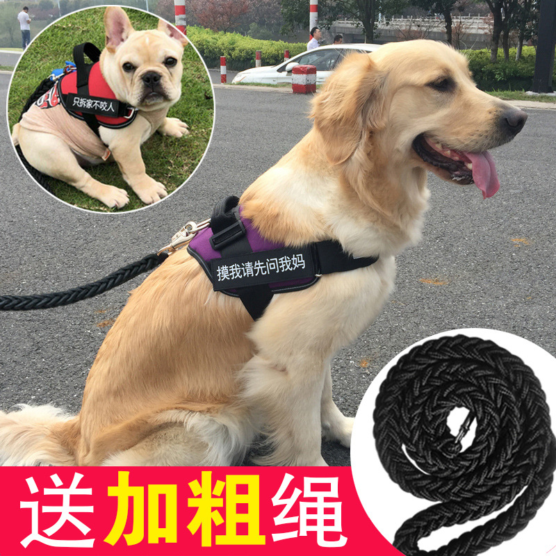 Back Type Dog Dog Medium Lanyard Golden Retriever Large Small Traction Poodle Dog Chain Thoracic Unscalable K9 Universal