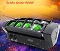Светильник с движущейся головкой, мини светодиодный светильник-паук 8x10 Вт RGBW, светильник с пучком, хорошее качество, быстрая доставка