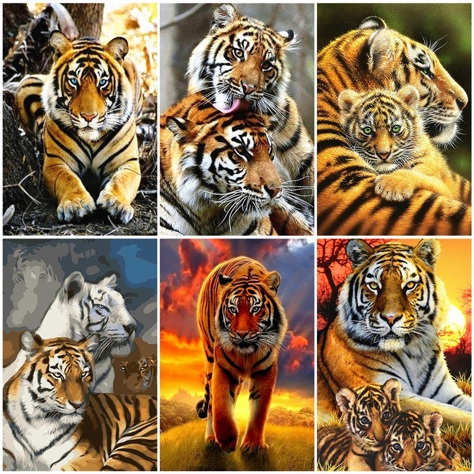 AZQSD Painting By Numbers Abstract Unframe Wall Art DIY Animal Decoration Adult Pictures By Numbers Tiger Handpainted Gift