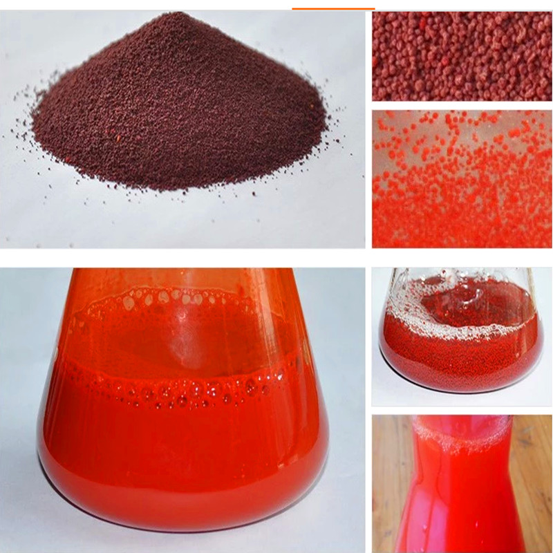 20 gram Feed Grade Canthaxanthin/Aphanicin/Carophyll Red Powder for Feed Additive Animal Feed Additive image
