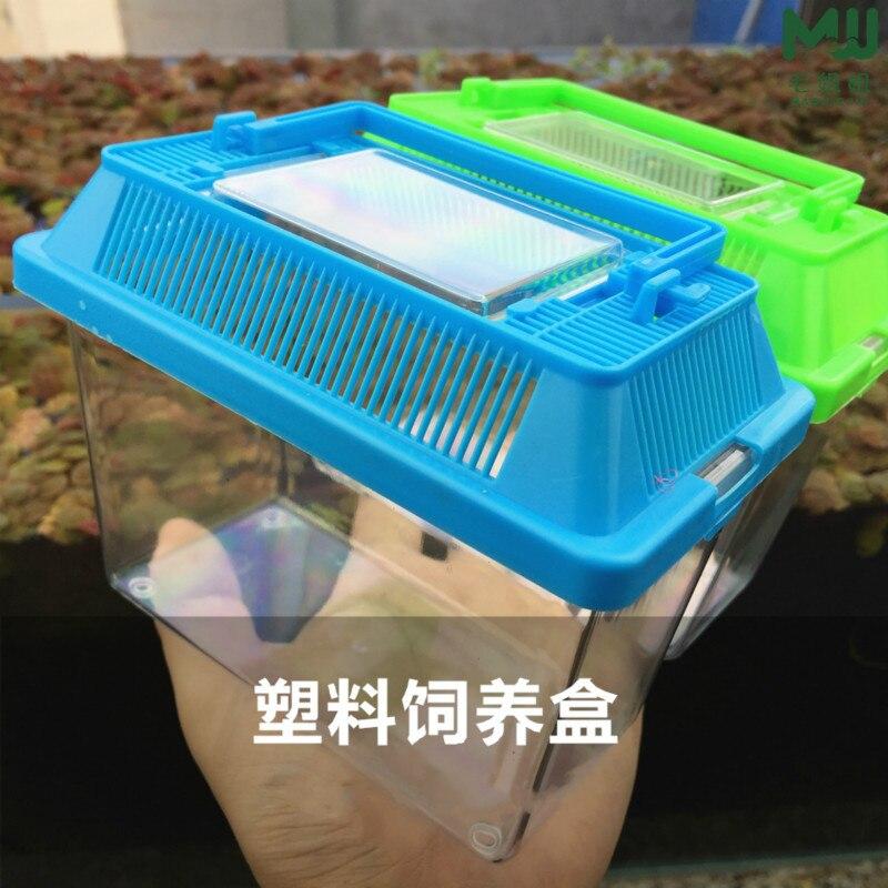 Caixa de elevação para animais portáteis, caixa de transporte de cilindro para tartaruga, tanque de peixes dourado e fechado, inseto, 1 peça caixa de caixa