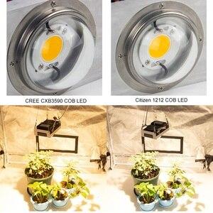 Image 5 - Cree CXB3590 COB LED Phát Triển Ánh Sáng Suốt 100W Công Dân 1212 Led Cây Phát Triển Đèn Trong Nhà Lều Nhà Kính thủy Canh Vật Có Hoa
