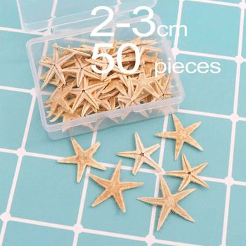 Natural Starfish Seashell Beach Craft Sea Stars DIY  Decor