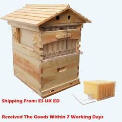 Автоматическая медовая пчелиная улей, деревянная коробка для сбора меда, коробка для еды, рамка в виде пчелиного улья, ящик для пчеловодства...